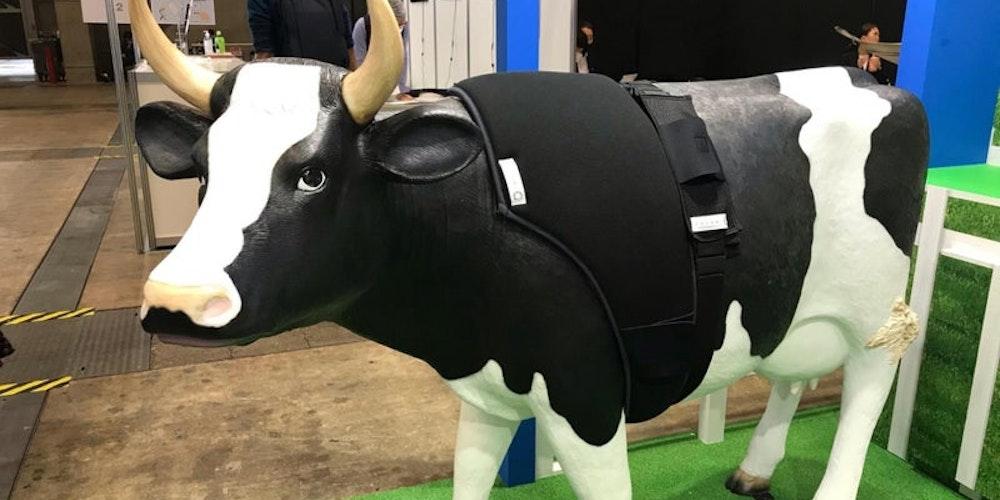動物もスマート衣料を着る時代!「COCOMI®」を使用した牛用スマートテキスタイルとは?