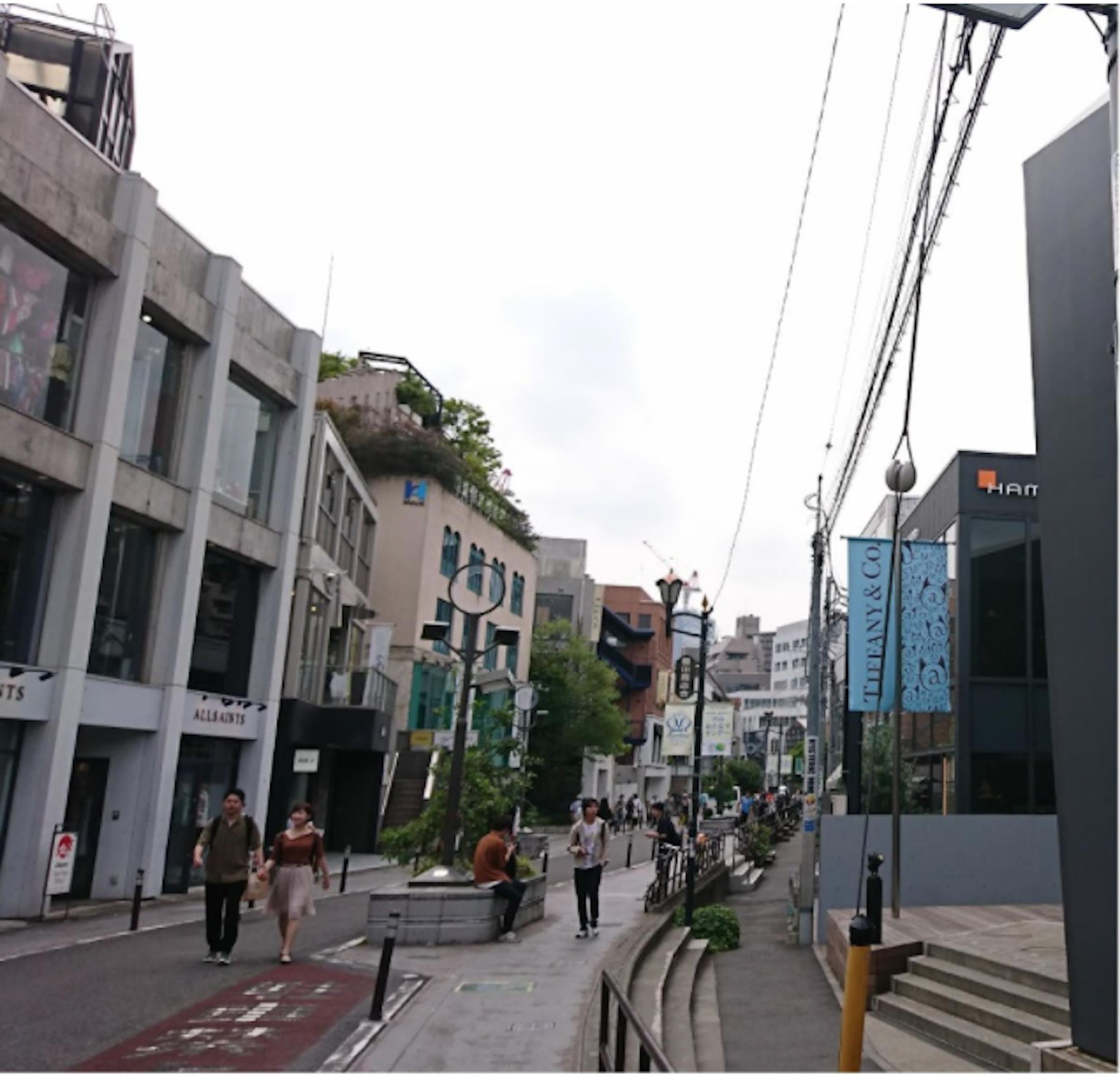 画像: 東京都渋谷区神宮前6丁目の「キャットストリート」(2017年秋に筆者が撮影)