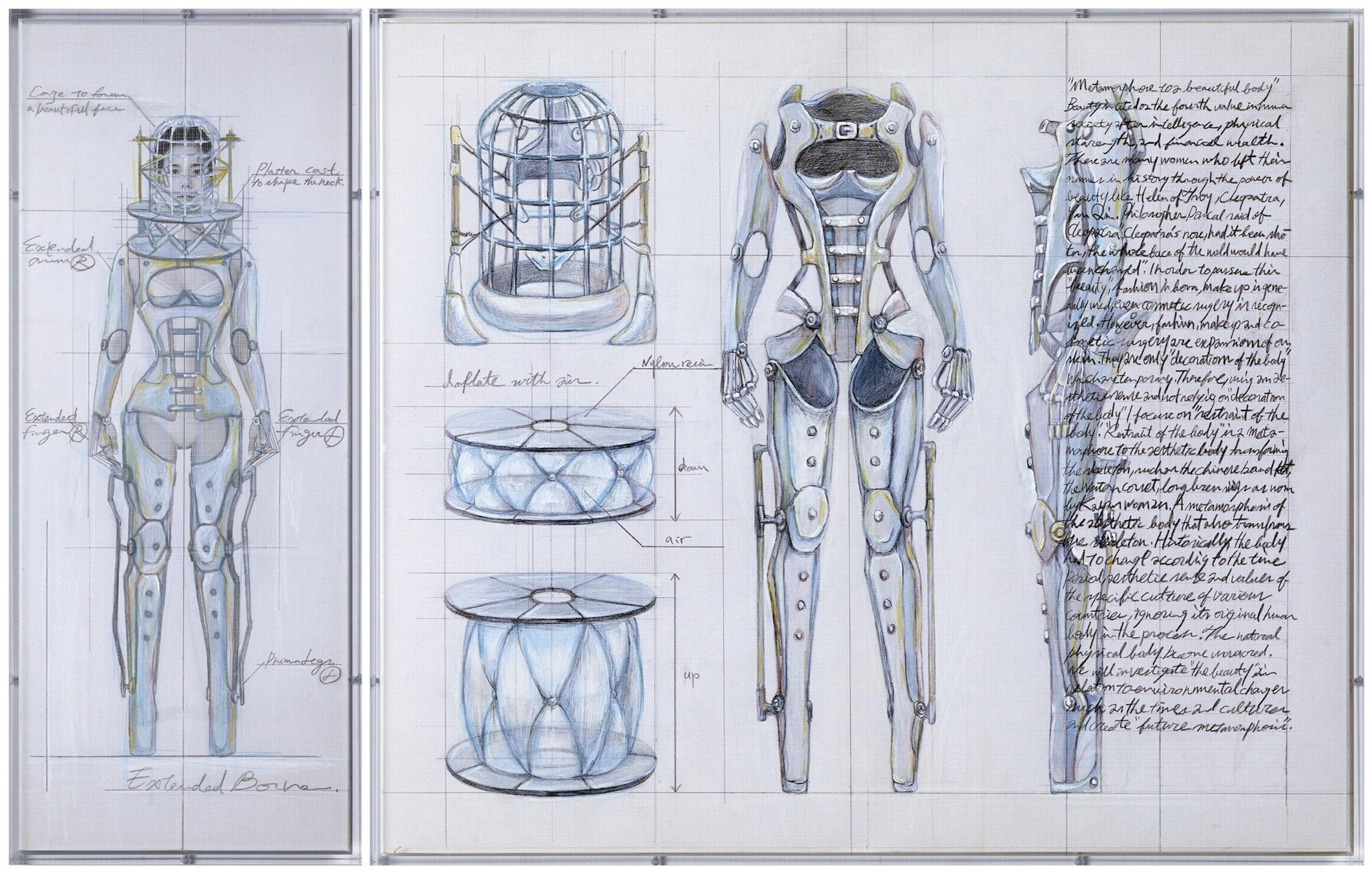 Study of Metamorphose [beautiful body.]