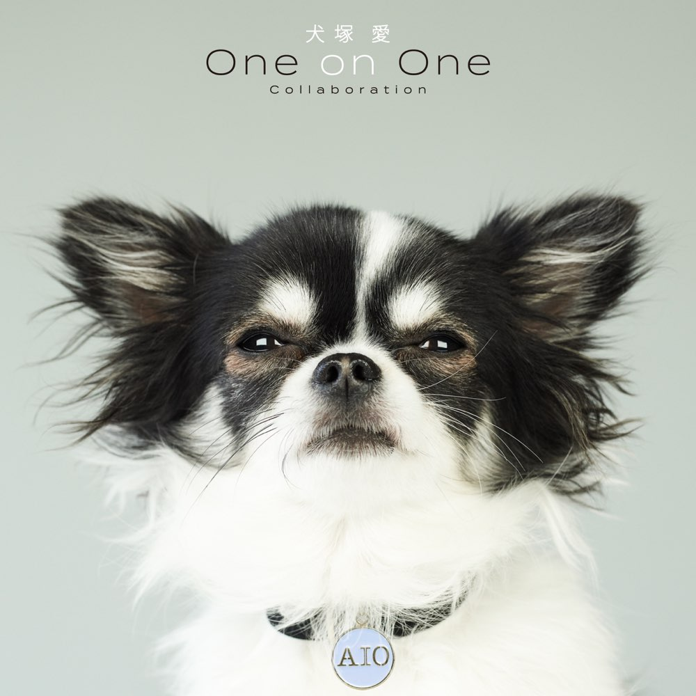 犬塚 愛 One on One Collaboration