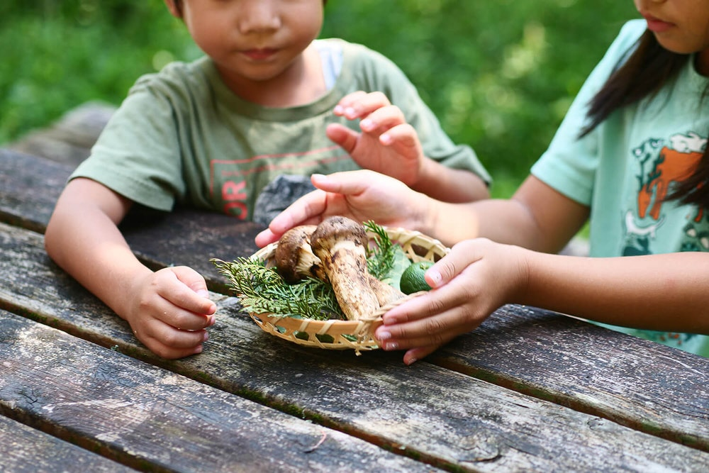 木の器で、秋を感じる山ごはん shiho&ヤッホー!!さん。の家族とヤマオウリョウキ