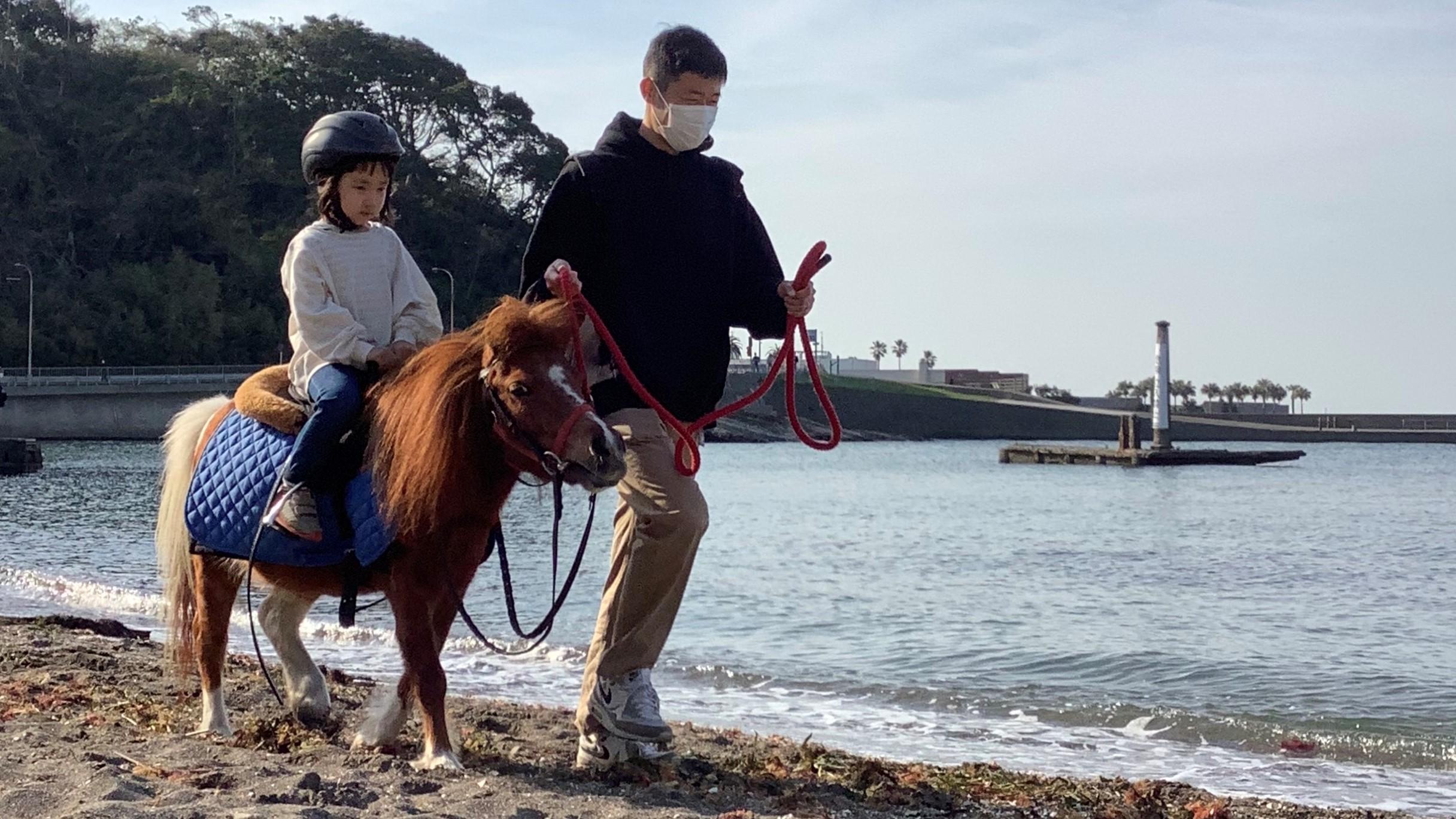 ポニーに乗ってビーチを散歩しよう!ホーストレッキング観音崎海岸